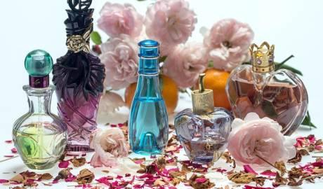 tienda de perfumes y fragancias online